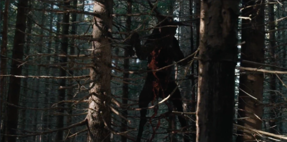 the-ritual-british-horror-film-david-bruckner-dead-bear-in-trees